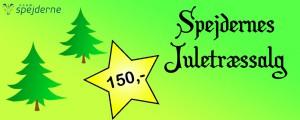 Spejderne sælger igen juletræer i Allingåbro