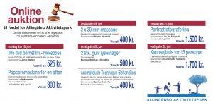 Nye auktioner på vej til fordel for Allingåbro Aktivitetspark