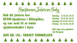 Spejderne sælger igen juletræer
