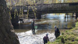 Fiskekonkurrence i flot solskin